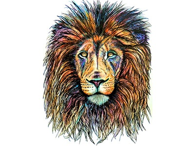 Rainbow Lion drawing big cats hippie rainbow rainbow lion lion portrait animals animal portraits colorful eyes
