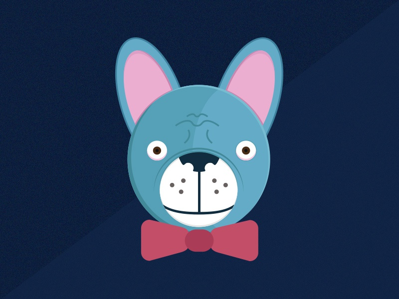 Dribbble French Bulldog illustration fun dog art work design animal bulldog french bulldog pet pet