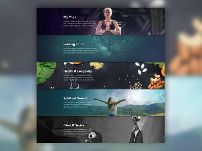 Gaia Panels social devices site spiritual promo healing gaia embrace web ui design