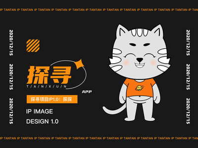 这是我们做的一个探寻项目的IP。 illustration typography logo graphic design branding ux ui icon design color art