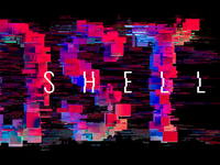 Glitch in the Shell