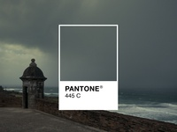 Pantone 445C San Juan