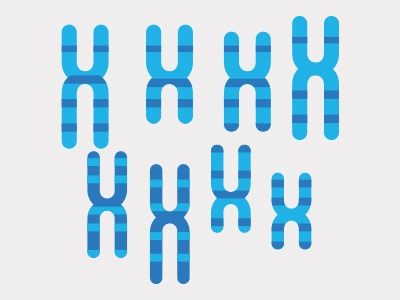 Chromosome science chromosome illustration