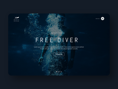 Hero Section Exploration - Freediver Website freediver diving hero image hero section web design website ui  ux ui freelancer freelance designer croatia