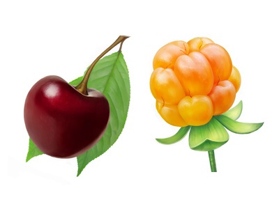 Cherry and cloudberry cherry cloudberry fruit illustration food