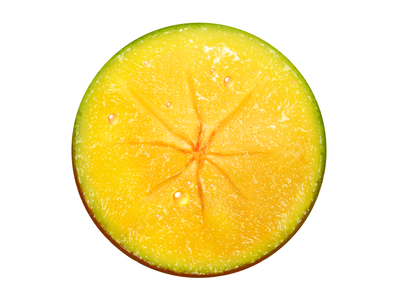 Baltica • Illustrations for advert • Mango baltica mango fruits food illustration digital painting digital illustration drawing