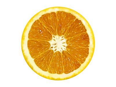 Baltica • Illustrations for advert • Orange orange fruit branding food illustration digital painting digital illustration drawing