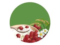 Porridge Wild Strawberry