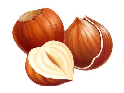 Cadbury • Hazelnut • Illustrations for packaging hazelnut nuts package packaging food illustration digital painting digital illustration drawing