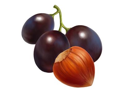 Cadbury • Grape/Hazelnut • Illustrations for packaging