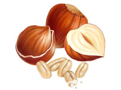 Cadbury • Rice/Hazelnut • Illustrations for packaging cadbury rice nuts package fruit packaging food illustration digital painting digital illustration drawing