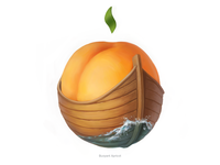 Buoyant Apricot • Series of avatars for colleagues