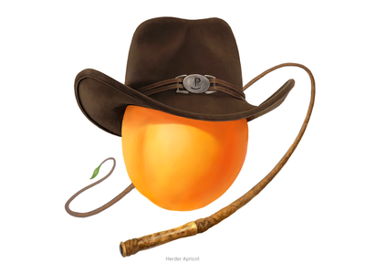 Herder Apricot • Series of avatars for colleagues herder avatars drawing illustration