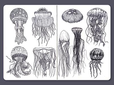 Jellyfish • Sketchbook blackandwhite jellyfish lineart dotwork ink moleskine sketchbook drawing illustration