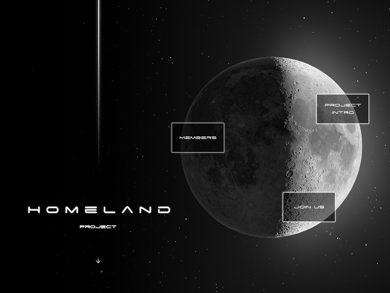 Homeland project website concept