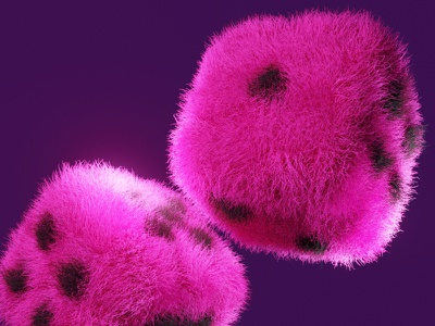 Furry Dice 3d fur blender