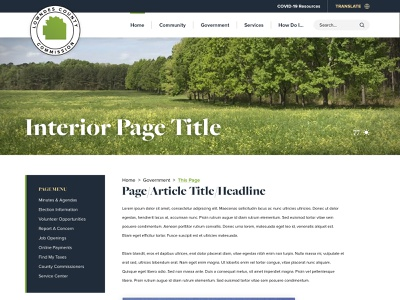 Lowndes County, AL - Homepage Design service alabama typography ux homepage branding web government