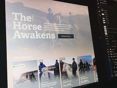 The Horse Awakens responsive cards duotone e-commerce ecommerce iceland horses renta