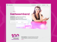 Award winning web design for Reykjavik Fiber Optics