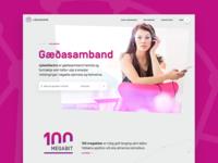 Award winning web design for Reykjavik Fiber Optics
