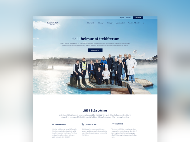 Bluelagoon jobs dribbble