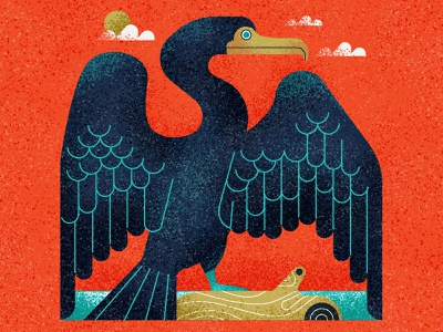 Cormorant  water clouds beak stylised characterdesign feathers cormorant bird design retro drawing graphic character vector texture illustration