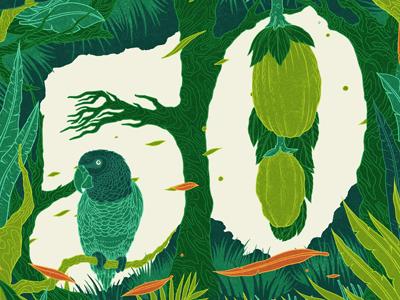 50 editorial illustration design green plant parrot bird lettering typography branch number negative
