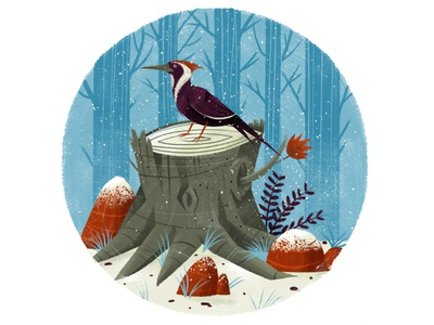 Woodpecker in Winter texture drawing character cold animal snow forest tree wildlife nature bird illustration