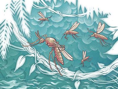 Buzzin' editorial plant exotic jungle mosquito dolphin drawn travel vintage retro nature illustration