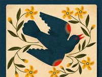 Blackbird instagram