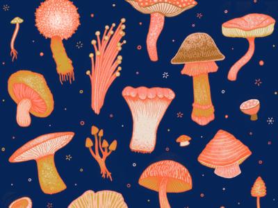 Magical Mushrooms T-shirt pattern mushroom t-shirt design drawing illustration