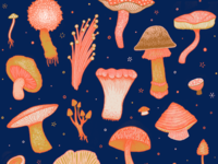 Magical Mushrooms T-shirt
