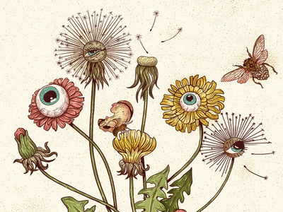 Dandelion plant flower insects botanical vintage drawing texture illustration
