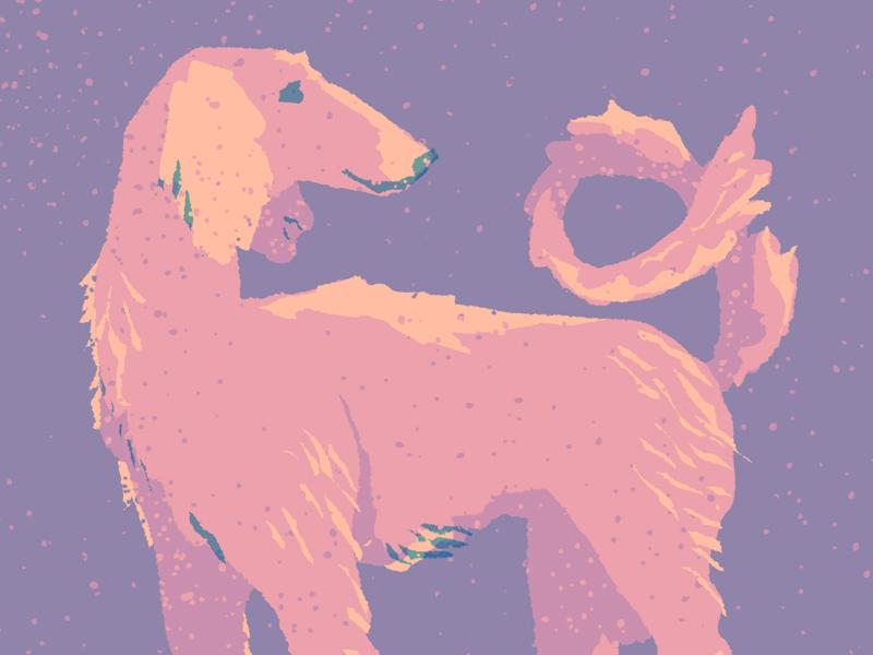 Saluki textile dog design vintage retro drawing flat graphic character vector texture illustration