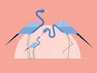 Monday Blues crane characterdesign wildlife animals birds bluecrane flat graphic character vector texture illustration
