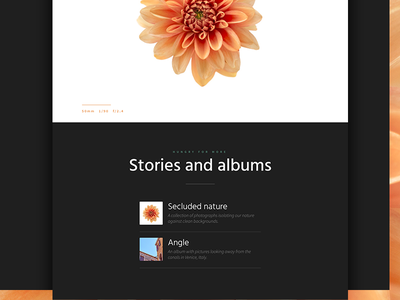 WIP - Personal website redesign #2 photography website portfolio redesign clean