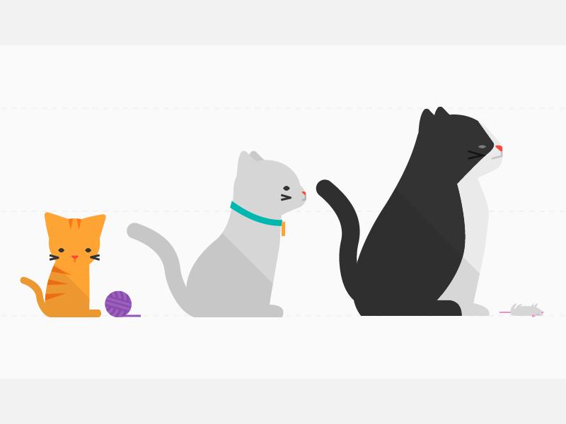 Growing Cats pilot interactive cat kitten yarn grow