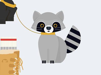 Raccoon raccon pilot interactive