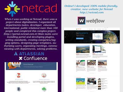 Netcad Project websites webdesigner webdesigns responsive web design responsive web flow netcad confluence solution web design branding responsive website responsive design website design website webflow webdesign