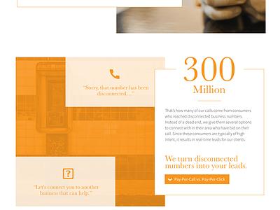 Soleo Email and Landing Page open sans baskerville email website