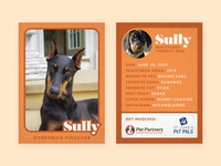 Therapy Dog Trading Card — Sully