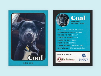 Therapy Dog Trading Card — Coal