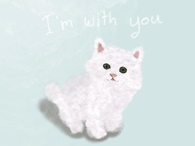 Cutie cat cat