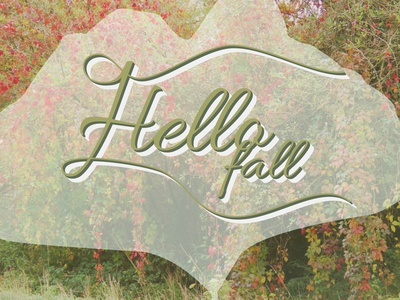 Hello Fall illustration 2 -2021 colorful color photography photo feuille leaf handlettering calligraphy typographt fall illustration automne autumn fall illustration designer graphique designer portfolio design graphique graphic designer graphic design design