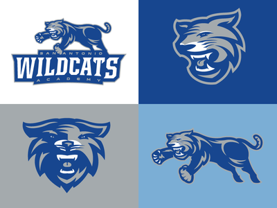 Rebranding the San Antonio Wildcats