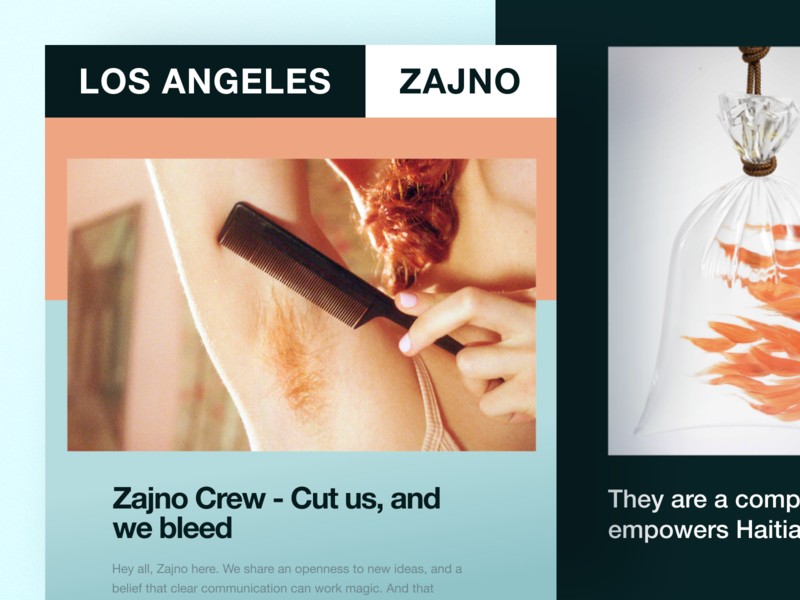 Zajno Newsletter: The Launch technology music email digital creative cover brand art agency typography ui ux launch share news feed newsletter friendly bright colors design branding zajno