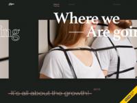 The New Zajno Website Wins FWA of the Day!