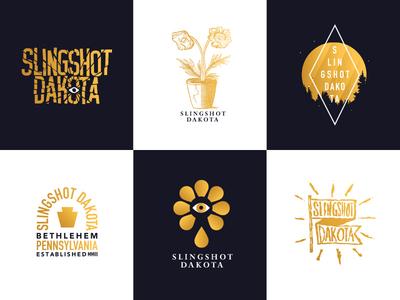 Slingshot Dakota Merch merchandise shirt band merch music bands design illustration