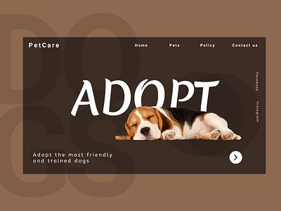PetCare art app design website graphic design animation typography ux ui illustration