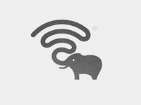 Wifi + Elephant